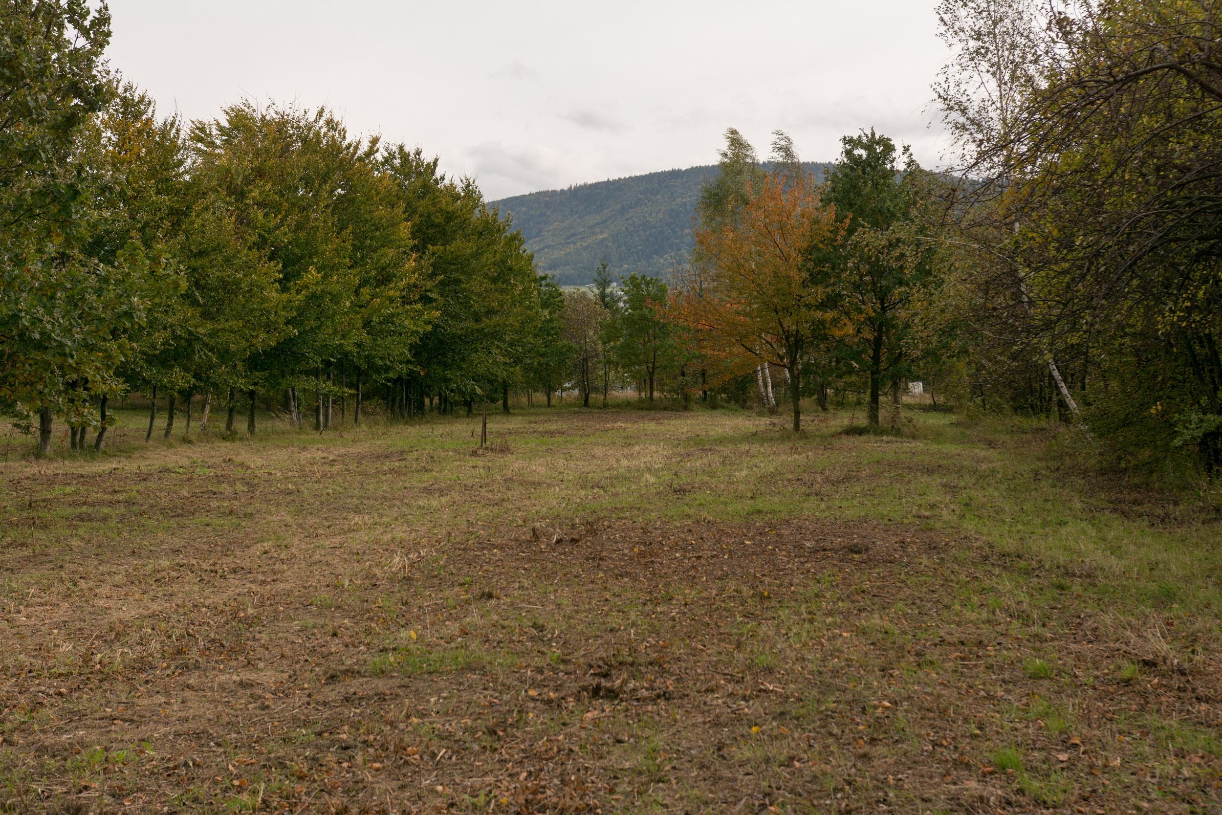 Zdjęcie 4Działka budowlana z widokiem na góry